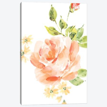 Rosa No. 5 Canvas Print #SEL48} by Melissa Selmin Art Print