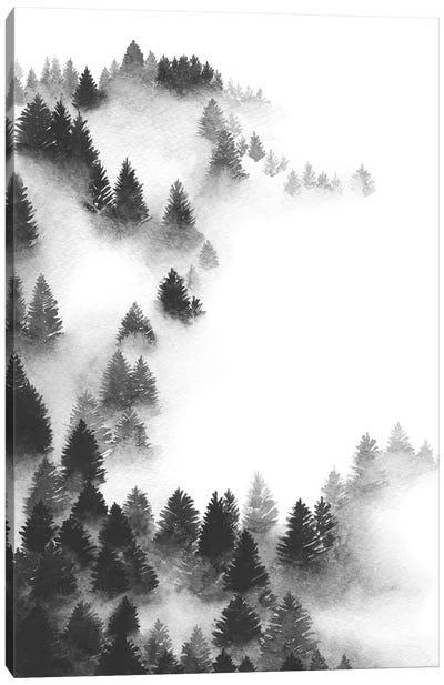 Abundance Canvas Art Print