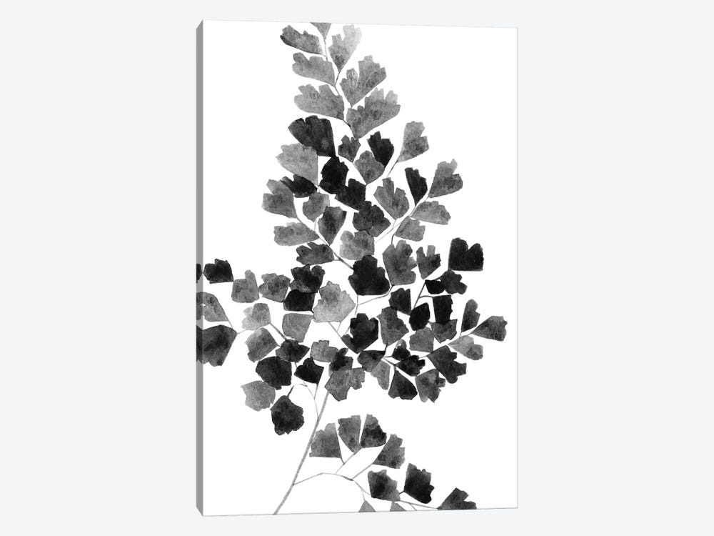 Black Fern by Melissa Selmin 1-piece Art Print