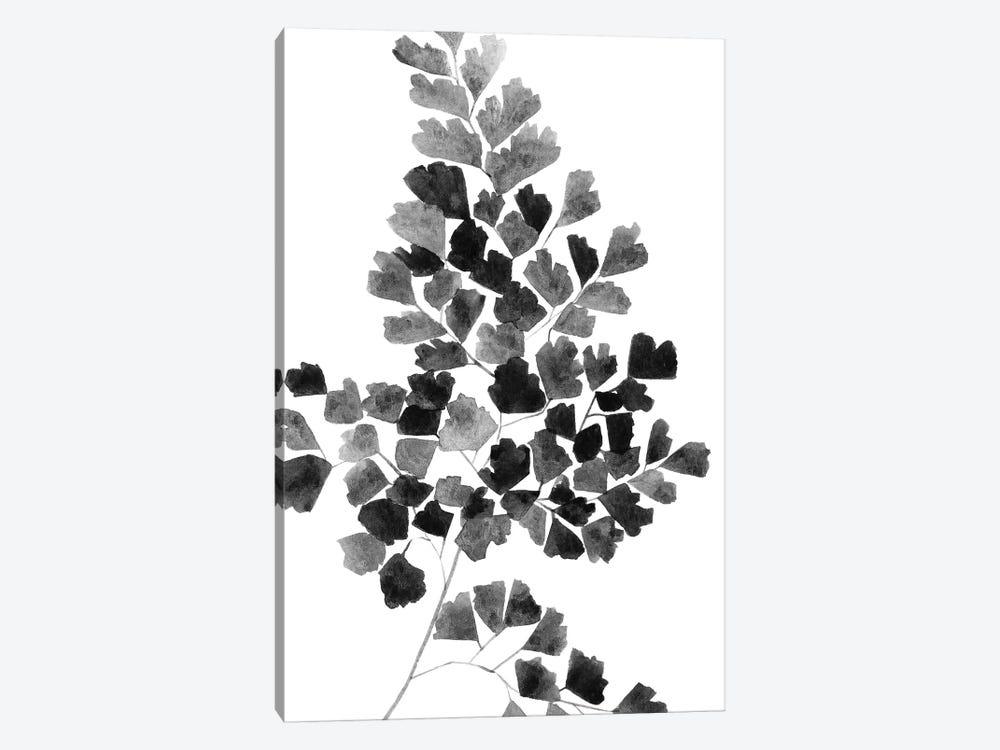 Black Fern by Melissa Selmin 1-piece Art Print