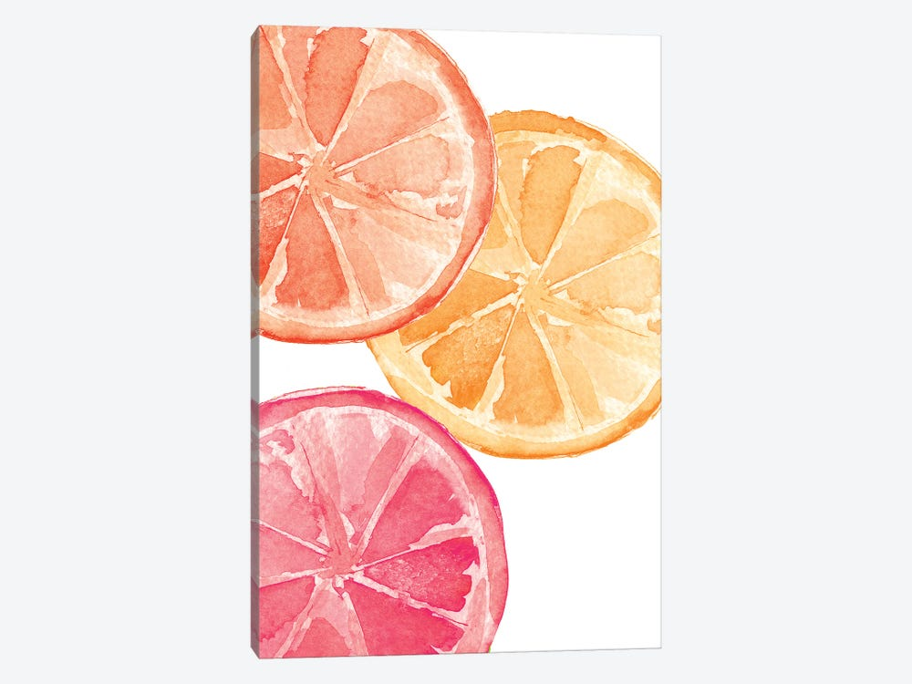 Citrus Slices by Melissa Selmin 1-piece Canvas Wall Art