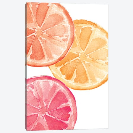 Citrus Slices Canvas Print #SEL5} by Melissa Selmin Canvas Artwork