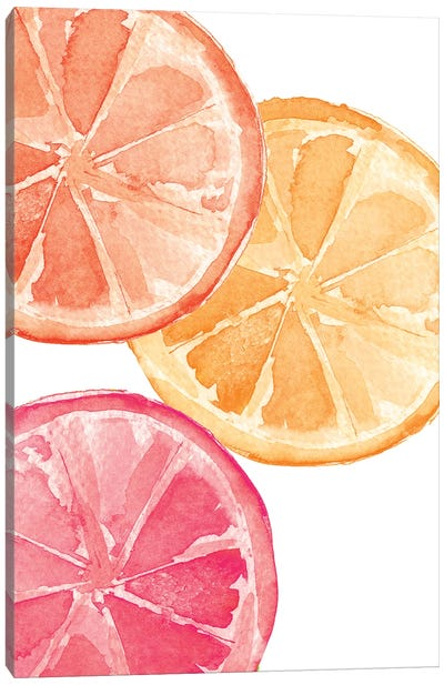 Citrus Slices Canvas Art Print