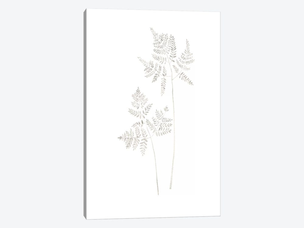 Delicate Fern by Melissa Selmin 1-piece Canvas Art Print
