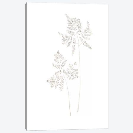 Delicate Fern Canvas Print #SEL8} by Melissa Selmin Art Print