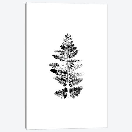 Fern Impression Canvas Print #SEL9} by Melissa Selmin Art Print
