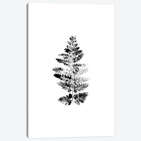 Fern Impression Canvas Print #SEL9} by Melissa Selmin Art Print