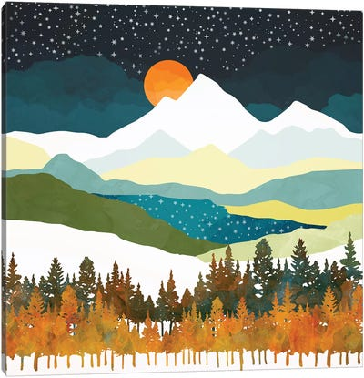 Winters Night Canvas Art Print