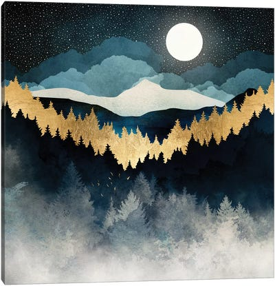 Indigo Night Canvas Art Print