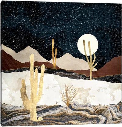 Desert View Canvas Art Print