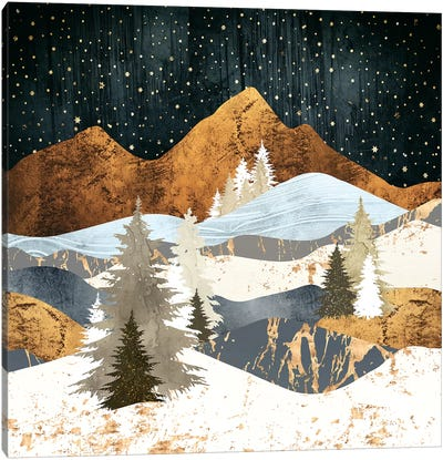 Winter Stars Canvas Art Print
