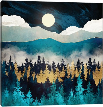 Evening Mist Canvas Art Print