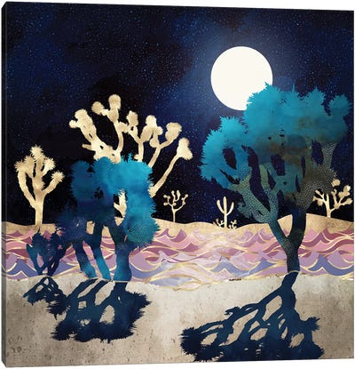 Desert Lake Moonlight Canvas Art Print