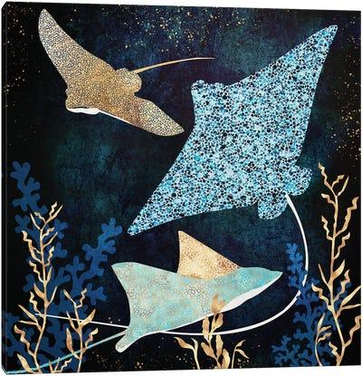 Metallic Stingray Ii Canvas Art Print