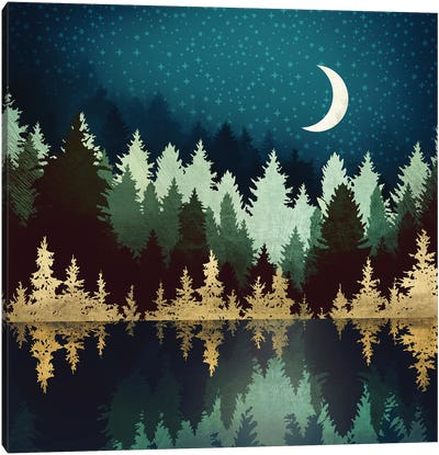 Star Forest Reflection Canvas Art Print