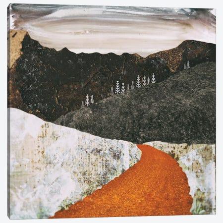 Desert Snow Canvas Print #SFD31} by SpaceFrog Designs Canvas Art
