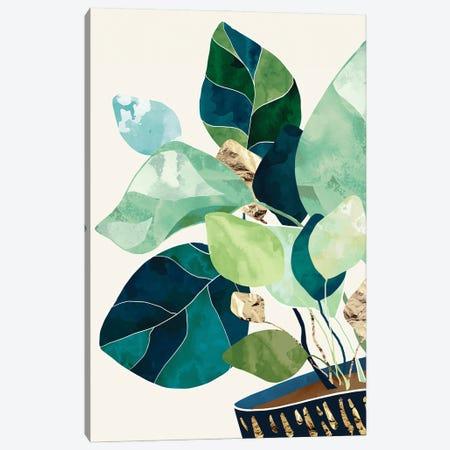 Indigo Plant II Canvas Print #SFD330} by SpaceFrog Designs Canvas Print