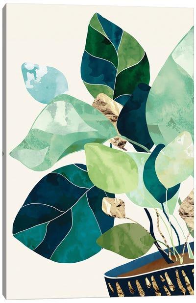 Indigo Plant II Canvas Art Print