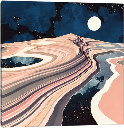 Desert Reflection Canvas Art Print