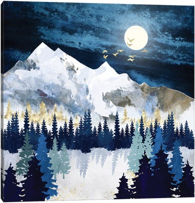 Moonlit Snow Canvas Art Print