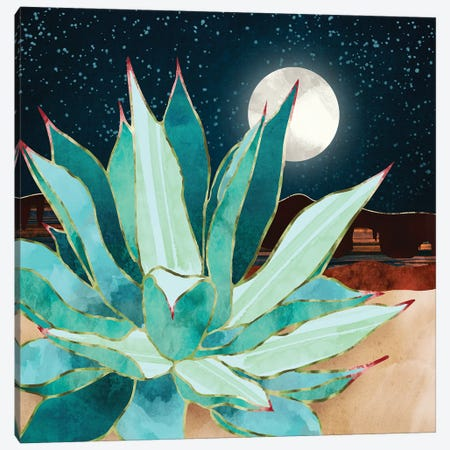 Desert Agave Canvas Print #SFD355} by SpaceFrog Designs Canvas Art