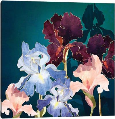 Iris Abstract Canvas Art Print