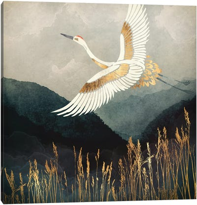 Elegant Flight Canvas Art Print
