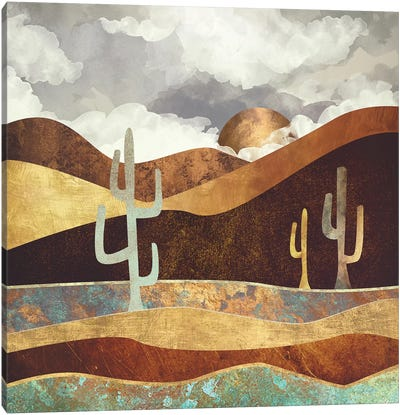 Patina Desert Canvas Art Print