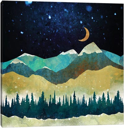 Snow Night Canvas Art Print