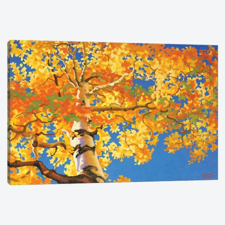 Aspen Sypreme  Canvas Print #SFI5} by Sidorov Fine Art Canvas Artwork