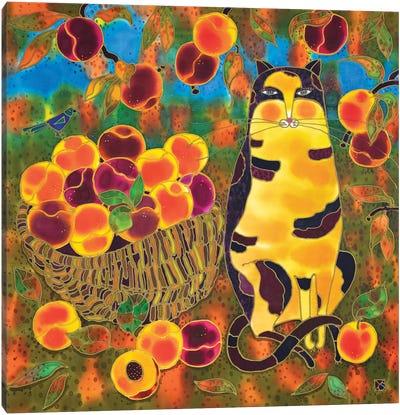 Calico Peaches. Canvas Art Print