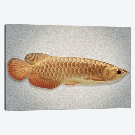 Gold Arowana Fish Canvas Print #SFP12} by Sergio Feldmann Pearce Canvas Art