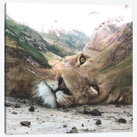 Lion Valley Canvas Print #SFP17} by Sergio Feldmann Pearce Art Print