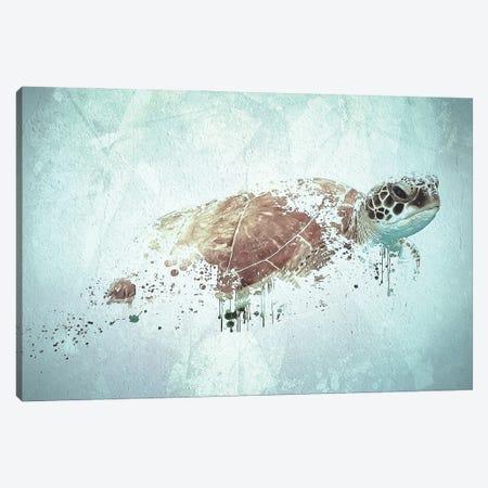 Turtle Canvas Print #SFP34} by Sergio Feldmann Pearce Canvas Art Print