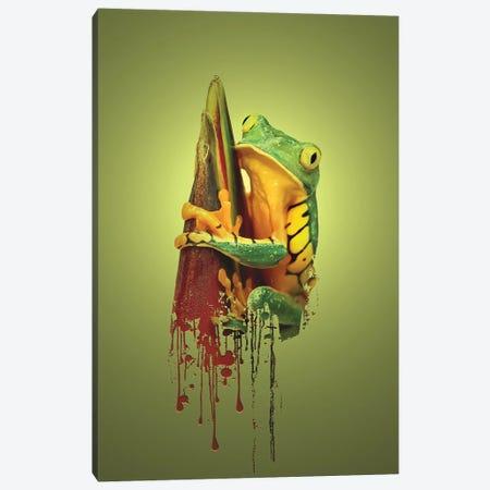 Frog Canvas Print #SFP53} by Sergio Feldmann Pearce Canvas Wall Art