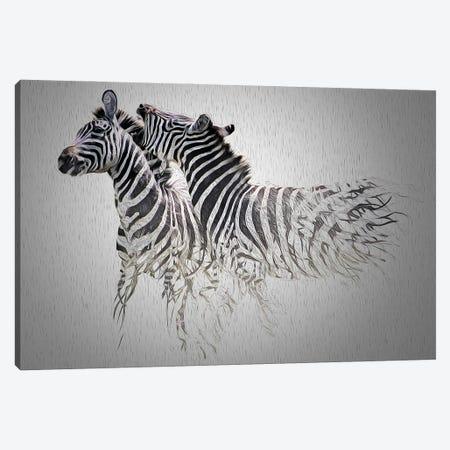 Cebras Canvas Print #SFP9} by Sergio Feldmann Pearce Canvas Art Print