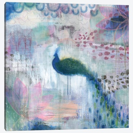 Peacock Canvas Print #SFR110} by Sara Franklin Canvas Art