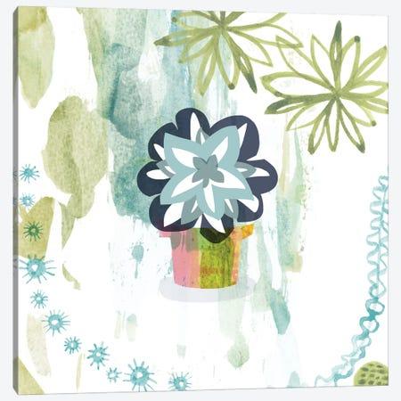 Succulent Flower Canvas Print #SFR146} by Sara Franklin Canvas Artwork