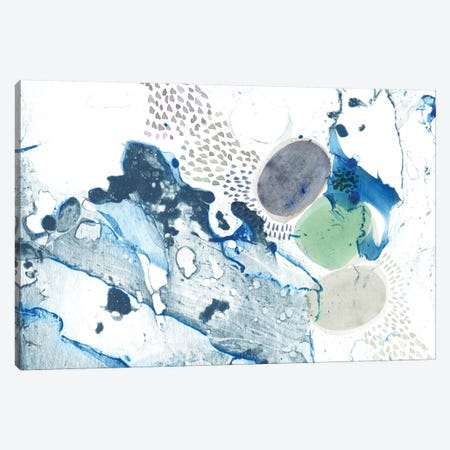 Blue Marble Canvas Print #SFR17} by Sara Franklin Canvas Print