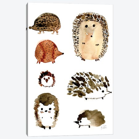 Hedgehogs Canvas Print #SFR208} by Sara Franklin Canvas Artwork
