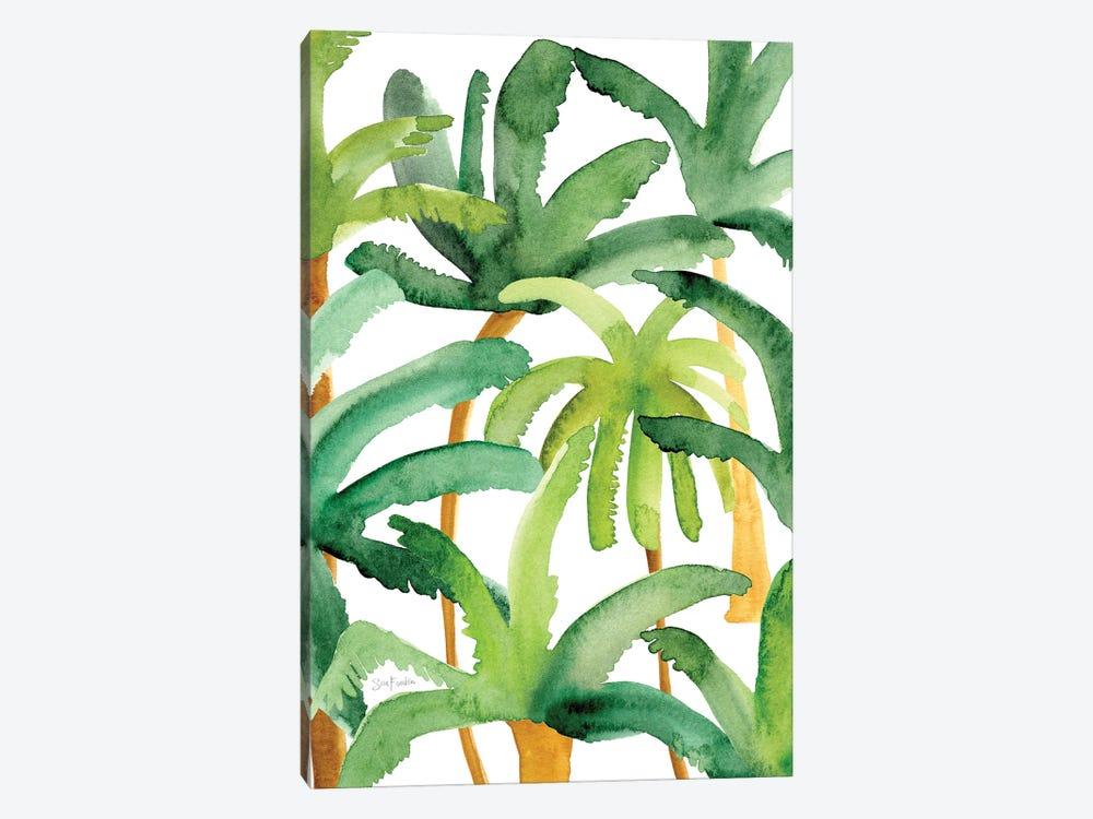 Palms by Sara Franklin 1-piece Canvas Artwork