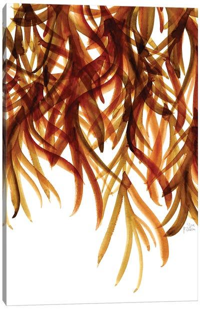 Seaweed Canvas Art Print