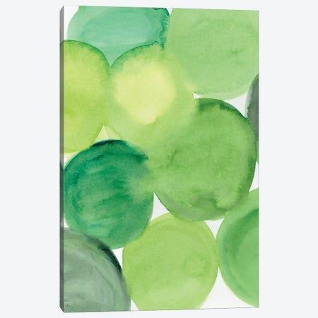 Succulent Green Canvas Print #SFR220} by Sara Franklin Canvas Artwork