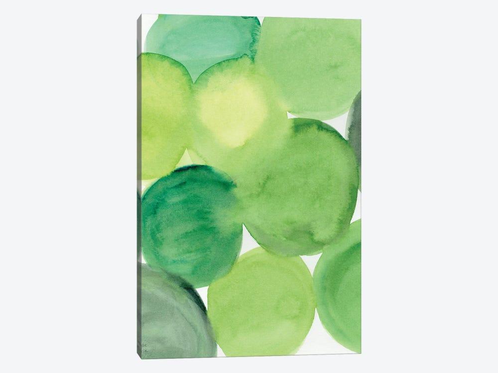 Succulent Green by Sara Franklin 1-piece Canvas Wall Art