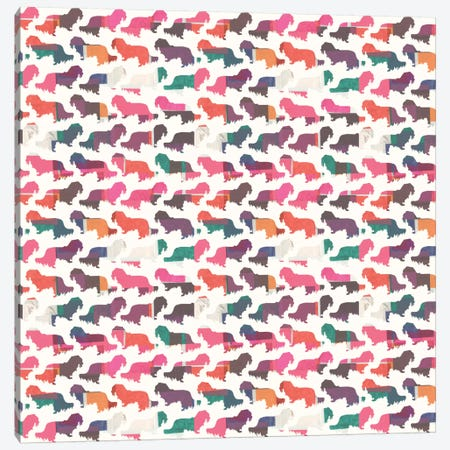 Coral Dachshunds Canvas Print #SFR41} by Sara Franklin Art Print