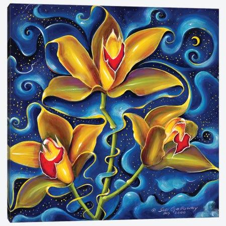 Dream Within A Dream Canvas Print #SGA6} by Susi Galloway Canvas Print