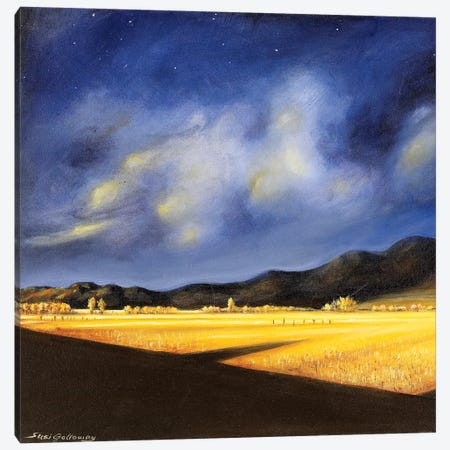 Golden Fields Canvas Print #SGA7} by Susi Galloway Canvas Art Print