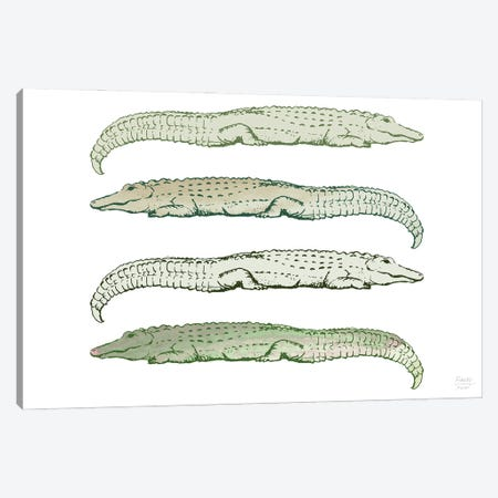 Lazy Alligators Canvas Print #SGD119} by Statement Goods Canvas Art Print