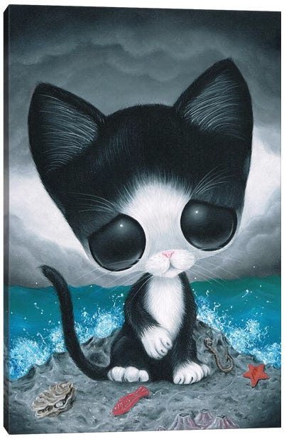 Curiousity Canvas Art Print