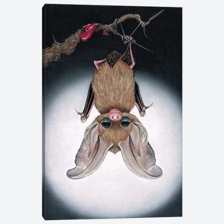 Evaki Canvas Print #SGF39} by Sugar Fueled Canvas Art Print